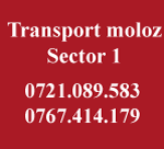 Transport moloz sector 1