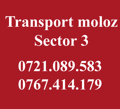 Transport moloz sector 3