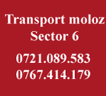 Transport moloz sector 6